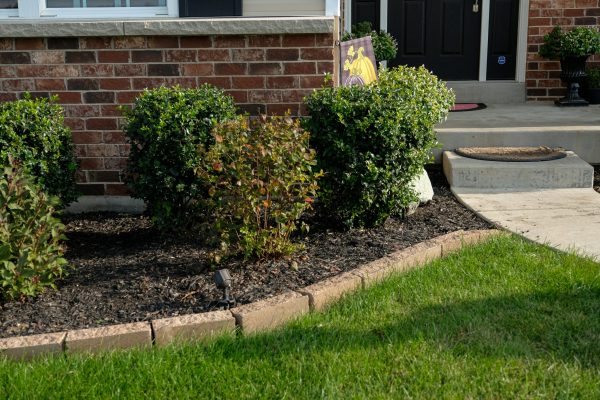 front entrance edging and landscape